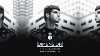 Dimension - Whip Slap (Annie Mac Premiere)