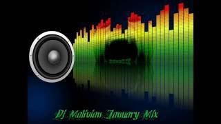 Dj Malivian - January Mix