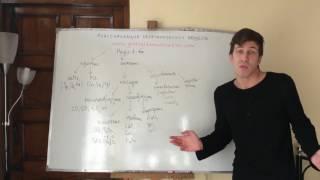 Классификация неорганических веществ. Самоподготовка к ЕГЭ и ЦТ по химии