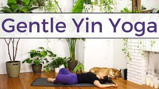 Gentle Yin Yoga   Yin Yoga for Beginners   20 Minute Practice