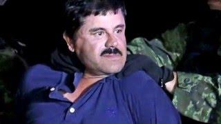 El Jefazo De La Sierra (Recaptura De El Chapo) (2016) - Buknas de Culiacán