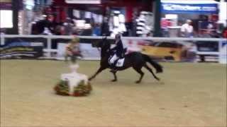Hugh Davies 138 UK National Championship Final 2013