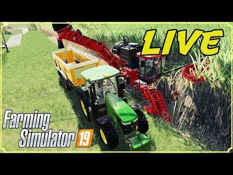 FARMING SIMULATOR 19 #48 LIVE - NON FINISCONO MAI QUESTE CANNE - GAMEPLAY ITA thumbnail