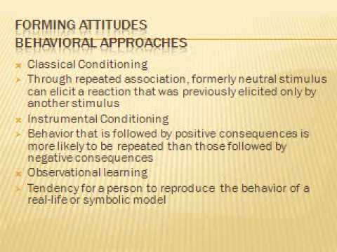 Social Psychology Powerpoint Presentationmpg - YouTube