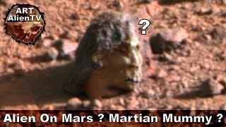 Alien Head Found on Mars - Martian/Alien Mummy - ArtAlienTV