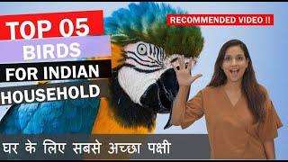 TOP 5 PET BIRDS | Best Pet Birds in India | Bird Prices in India | घर के लिए सबसे अच्छा पक्षी |