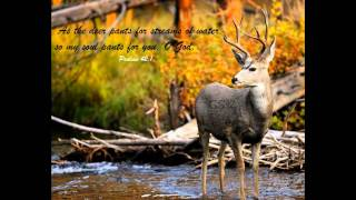 Tamil Christian Song : Maangal Neerodai Vaanipathupol ( As the deer paneth for the water in Tamil)