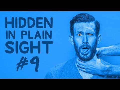 Can You Find Him in This Video?  Hidden in Plain Sight #9