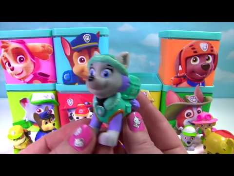 Paw Patrol Toy Surprise Boxes