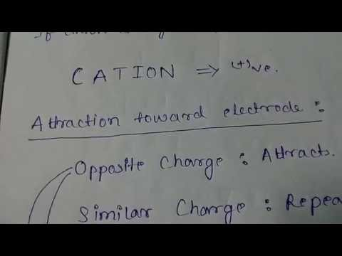 Charges of anion, cation, anode and cathode.