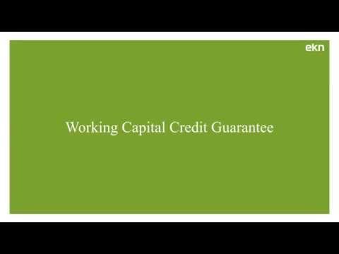 Working Capital Credit Guarantee