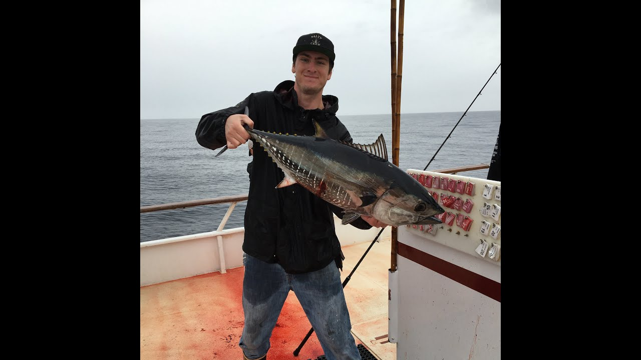 Bluefin Tuna And Rockfish Fishing San Diego Ca 4 7 16