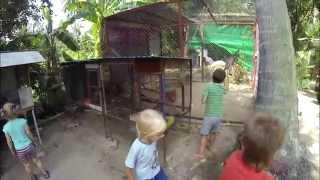 Серия №27: Долгое видео из минизоопарка на Самуи, можно гладить и кормить животных(Приехали в очень приятное место - минизоопарк, или парк птиц Самуи) Все животные и птицы в свободном доступе,..., 2014-04-25T15:05:13.000Z)