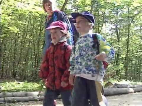 Toys don't last forever, but experiences do! Forest Kindergarten in Germany Part 1 Trailer