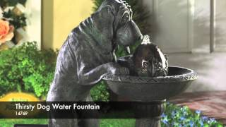 Video 14769 - Thirsty Dog Water Fountain download MP3, 3GP, MP4, WEBM, AVI, FLV Juli 2018