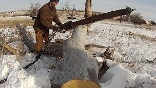 Hydraulic Chain Saw Test