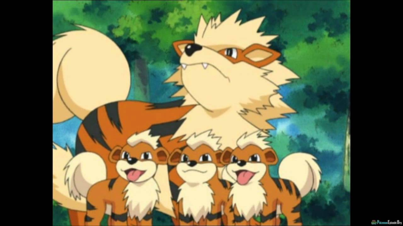 Arcanine speaks youtube - Arcanine pics ...