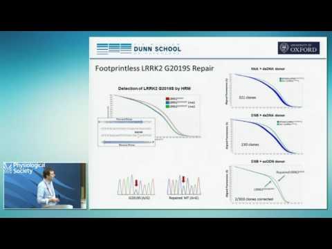 Gene editing of iPS cells to study neurological disease