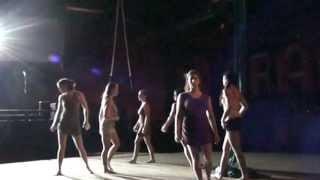 Bromelia Aerial Dance Collective