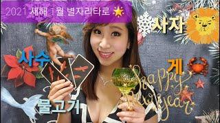 ★2021년 1월 별자리 타로운세 -물고기,사자,사수,게자리 ! 아듀2020★