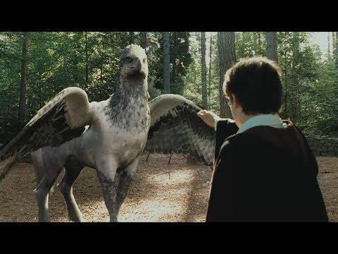 """Гарри Поттер пытается приручить Гиппогрифа - """"Гарри Поттер и узник Азкабана"""" отрывок из фильма"""