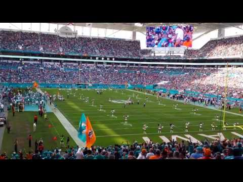 At the Miami Dolphins game - everyone singing the fight song