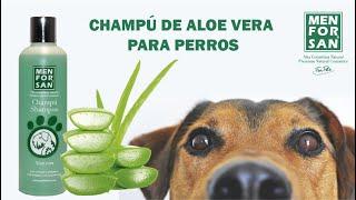 Vídeo: Champú para perros con Aloe Vera 300ml