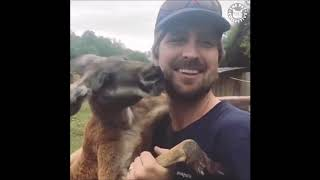 Смешные моменты в реальной жизни подборка лучших приколов животные  #7