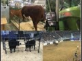 2018 Canadian Western Agribition