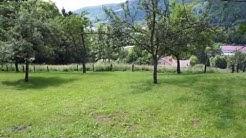 Location chalet Vosges à Bussang