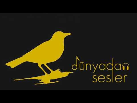 Axel Krygier - Zorzal (English, Türkçe Lyrics)
