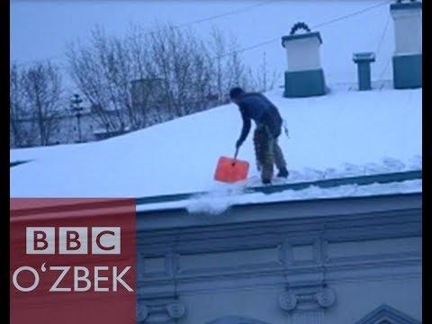 Мигрант ким? :) Мигрантлар хафа бўлмасин - BBC O'zbek
