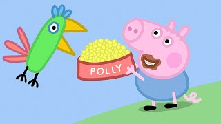 Peppa Pig Full Episodes | Polly's Holiday  | Cartoons for Children