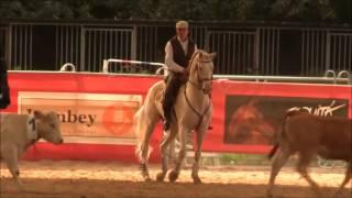 La Working Equitation à Paribérique 2016