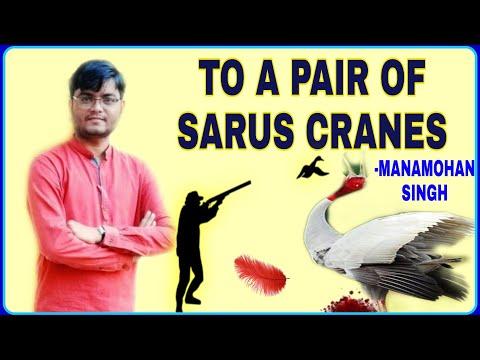To a Pair of Sarus Cranes Analysis