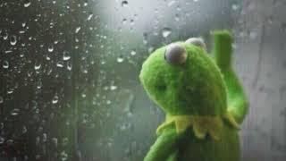 Kermit mood edit