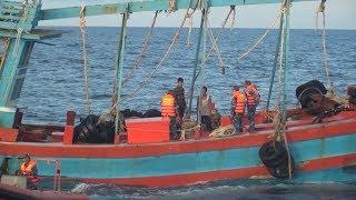 Tin Tức 24h Mới Nhất Hôm Nay :  Bắt giữ 100m3 dầu D.O vi phạm trên vùng biển Cà Mau