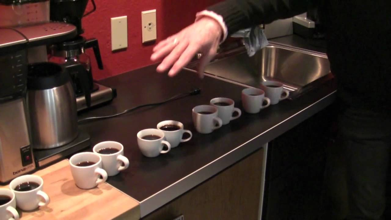 blind taste test technivorm vs bonavita coffee makers. Black Bedroom Furniture Sets. Home Design Ideas