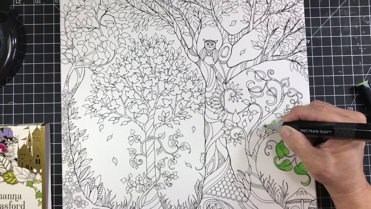 Johanna Basford coloring canvas review. - YouTube