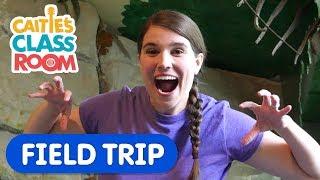 Dinosaur Adventure | Caitie's Classroom Field Trip