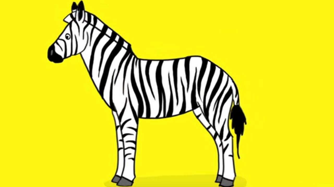 Coloriage Bebe Zebre.Apprendre A Dessiner Un Zebre