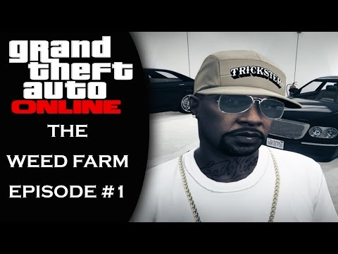 GTA 5 Online: Presents | The Weed Farm | #GTAOnline #XboxOneS | Episode #1