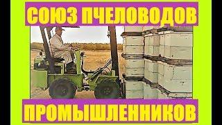 """Обращение председателя """"Союза пчеловодов промышленников"""" Николаева Д.А., к пчеловодам."""