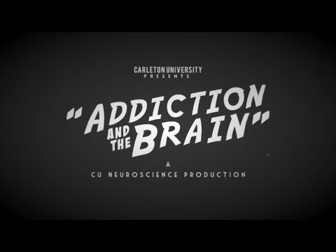 Neuroscience – Addiction and the Brain