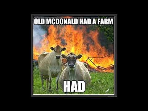 THE SECRET BEHIND OLD MacDONALD'S FARM / SHOULD HUMANS EAT MEAT (FLESH)?