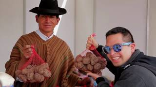 Agricultores de Santa Cruz de Pichiu representaron a Ancash en Feria de la Papa Nativa