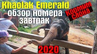 Khaolak Emerald Обзор Номера Завтрак Слоновья Ферма Отдых в Тайланде Часть 5 Декабрь 2019