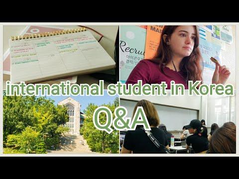 Full-time international student in Korea Q&A