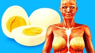 سوف تعشق البيض بعدما تعرف هذه المفاجآت التي أثبتها العلم وما هي فوائد البيض واضراره