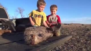 DeVries Family Outdoor Activities